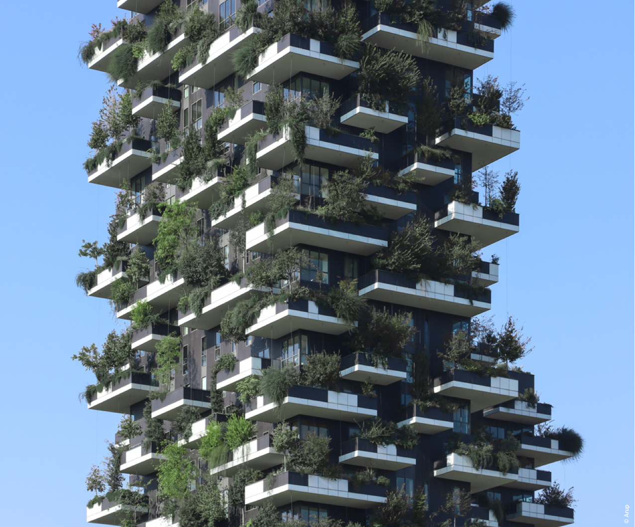 Bosco verticale estate