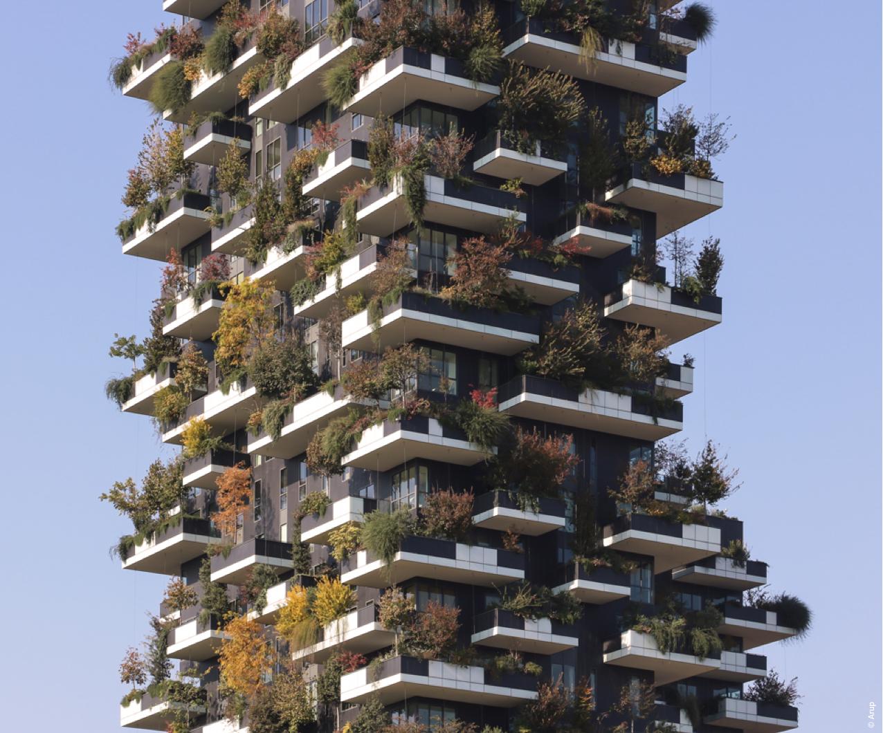 Bosco verticale autunno